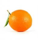 apelsinas-1e346193078bdf8d06c269b2e81034be.png