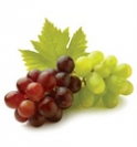vynuoges-b436454ffbb3107c2947288f30b690cd.png